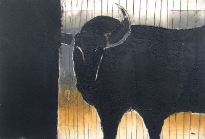 Bull with Stripey Field