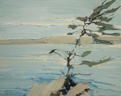 Ffiona Lewis, Pine Outcrop