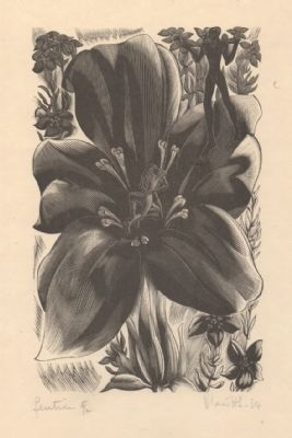 Gentian From The Ship of Death