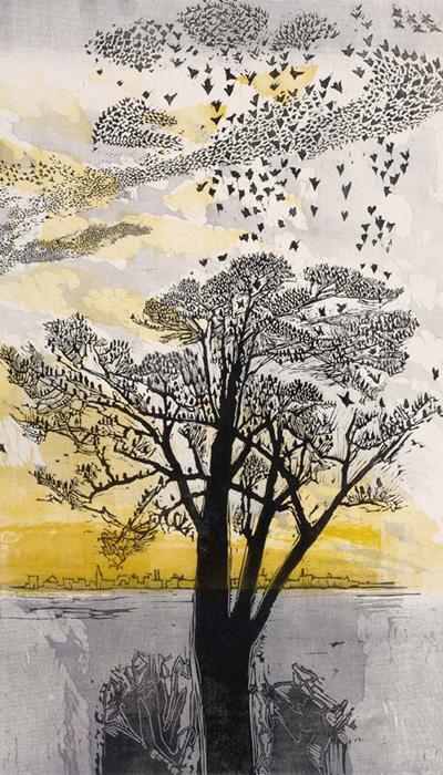 Starlings 1965