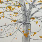 ALI MORGAN Spring - Summer - Autumn - Winter - Forty Tree Drawings Autmn 08