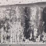 Bempton Cliffs - NORMAN ACKROYD