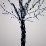 Helengai Harbottle, Small Tree -