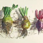 Lillias August Fresh Root Veg