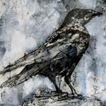 Crow (Je suis Saint Esprit)