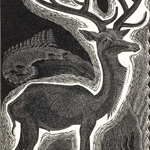 Stag 1932
