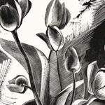 Tulips 1926 - GERTRUDE HERMES