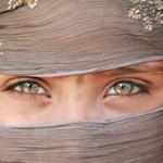 Eyes - EYES ON INDIA