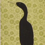 Cormorant on Coloured Paper